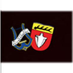 mvreichenbach1
